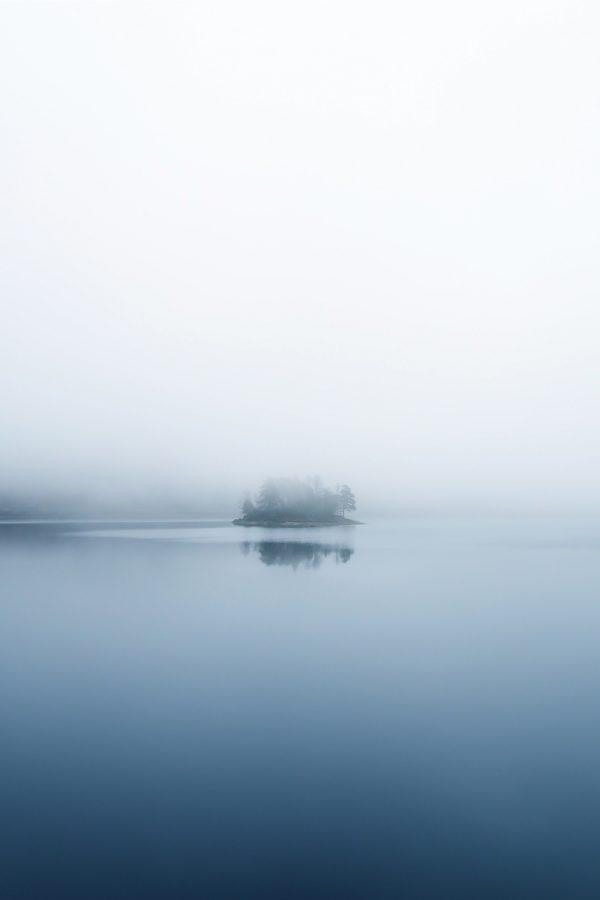 Silent Morning Print